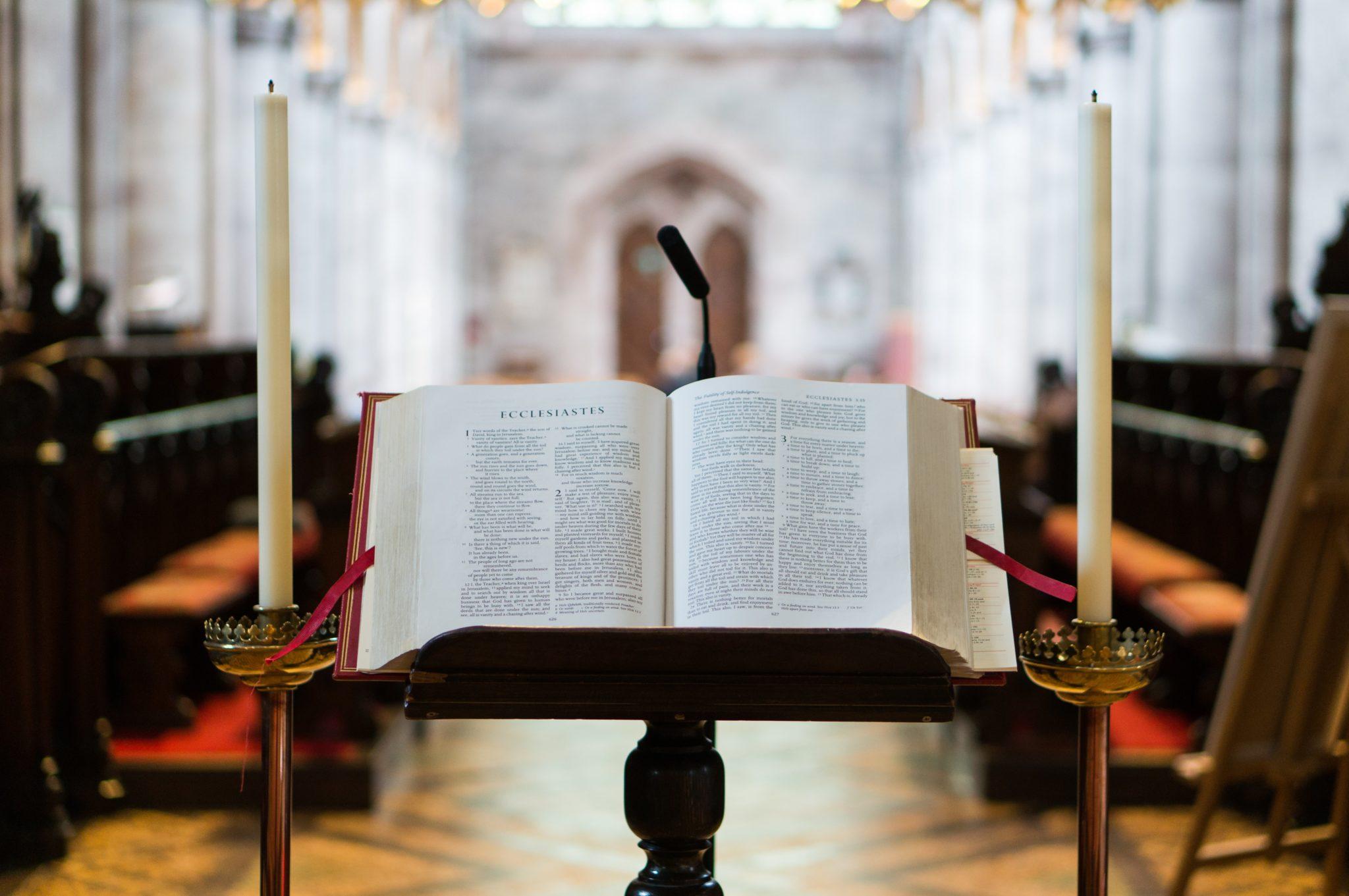 Lectio Divina Domingo XXIV Tiempo Ordinario