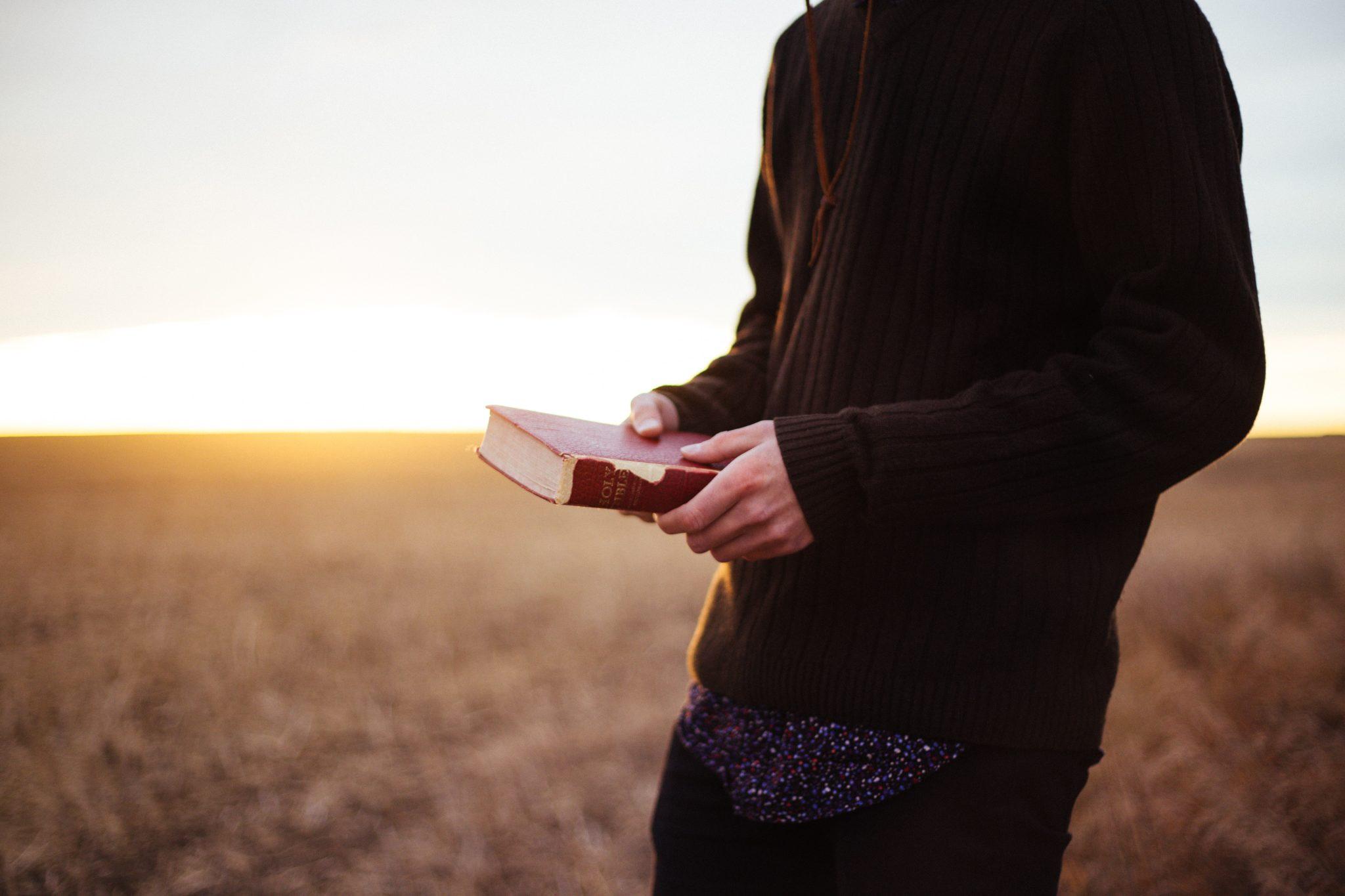 Lectio Divina Domingo XXII Tiempo Ordinario